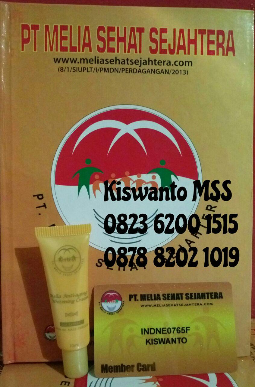 kiswanto 2