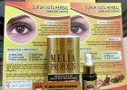 Gurah Mata Herbal Tanpa Efek Samping Dengan Melia Propolis