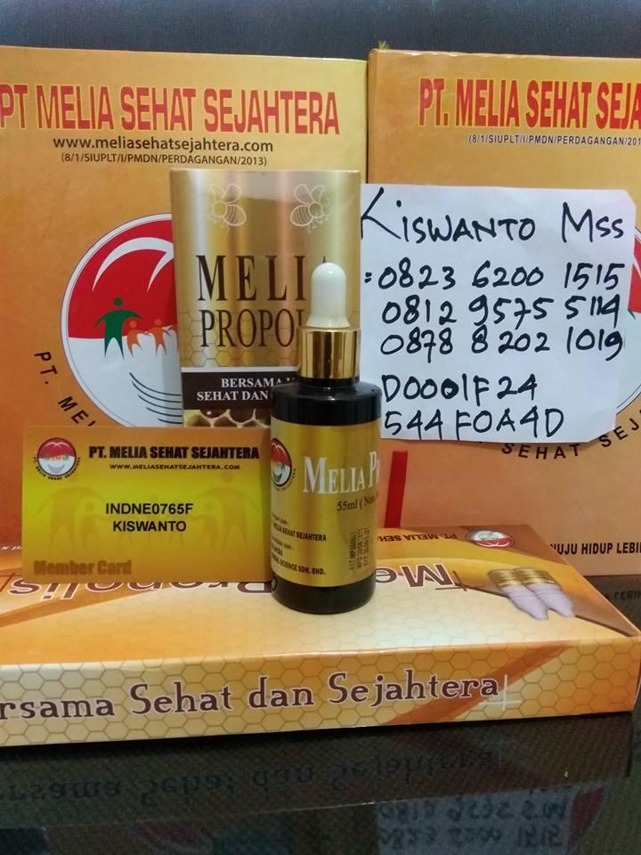 propolis 55ml